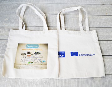ΙΚΥ - Erasmus Υφασμάτινη Τσάντα